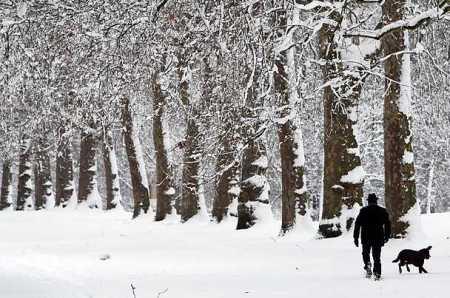 photos-a-heavy-snowfall-cripples-london-photo-essays-time_1233707686371