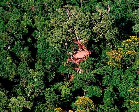 treehouses10