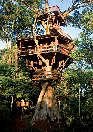 treehouses11