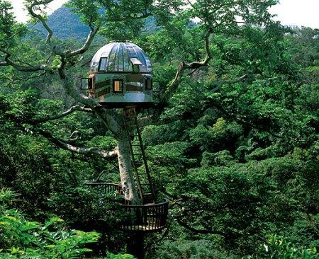 treehouses12