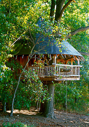 treehouses8