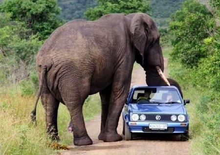 só falta o carro quebrar...